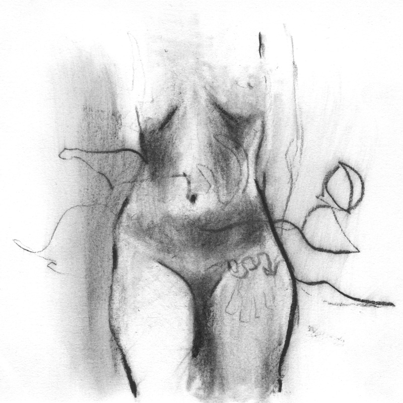 Hips, charcoal on Rives BFK, 2016